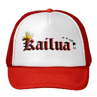 ¡Ho Brah! ¡…, el SID es gorra de s de Kailua '!!!