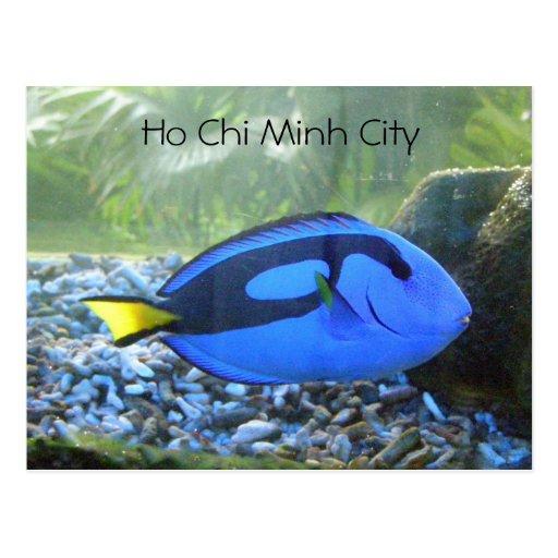 Ho Chi Minh City Post Cards