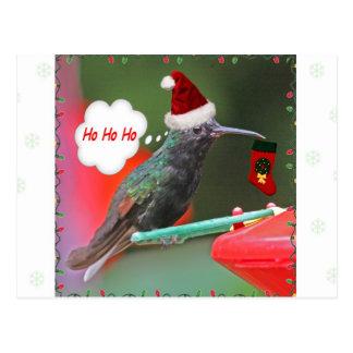 Ho Ho Ho Hummingbird Postcard