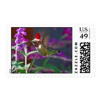 Ho Ho Ho Hummingbird Stamp