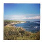 Ho playa del okipa del `, Maui Azulejos