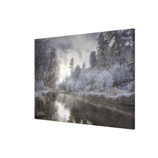 Hoarfrost along a slough at the Kelly Island Canvas Print