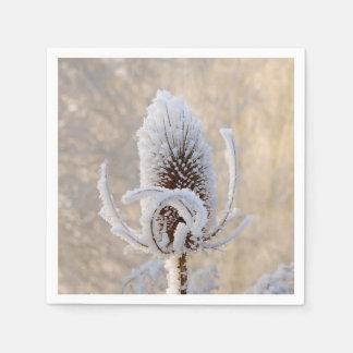 Hoarfrost on Teasels Winter Photo Scenic Nature Napkin