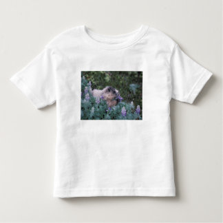 Hoary marmot feeding on silky lupine, Exit Toddler T-shirt