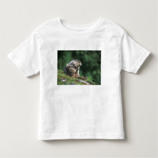 hoary marmot, Marmota caligata, scratches T Shirts