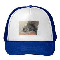 Hobie Cat, Hat