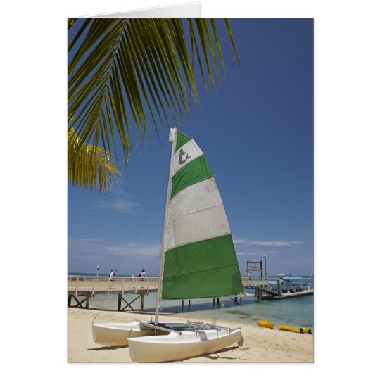Hobie Cat, Plantation Island Resort Card