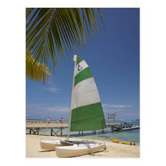 Hobie Cat, Plantation Island Resort Postcard