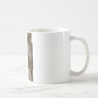 hocico taza