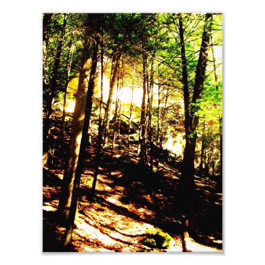 Hocking Hills Photo Print