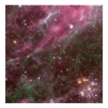 Hodge 301, nebulosa del Tarantula Poster