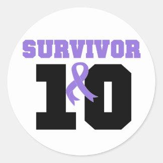 Hodgkins Lymphoma Survivor 10 Years Classic Round Sticker
