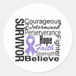 Hodgkins Lymphoma Survivor Collage Round Sticker