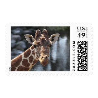 Hodokubo Hino Tokyo Japan 6 Stamps