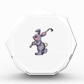 Hoe Rabbit Award