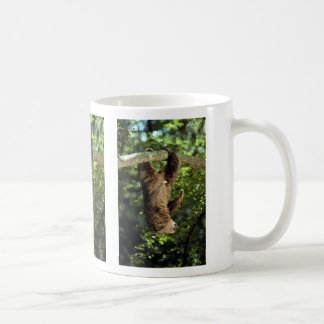 Hoffmann's two-toed sloth coffee mug
