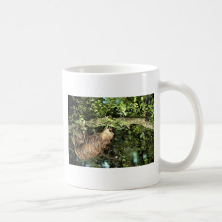 Hoffmann's two-toed sloth coffee mugs