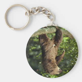 Hoffmann's two-toed sloth keychain