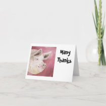 Hog Thank You Notecards