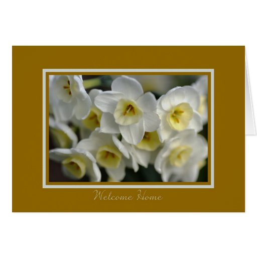 Hogar agradable - narcisos blancos tarjeton