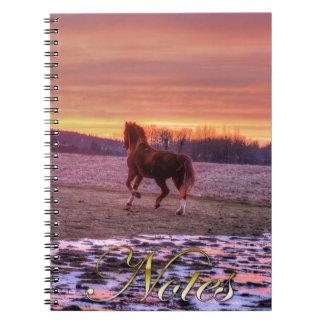 Hogar corriente del semental en la puesta del sol libro de apuntes con espiral