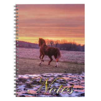 Hogar corriente del semental en la puesta del sol note book