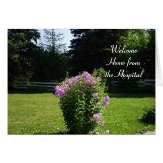 Hogar de las flores Hospital-Rosadas Tarjeta De Felicitación