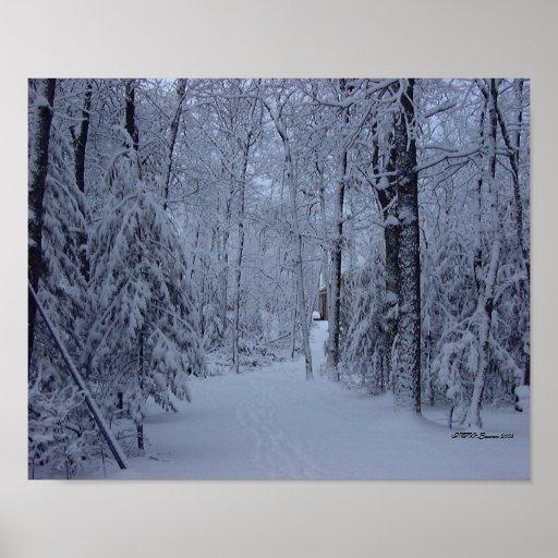 Hogar del camino nevado poster