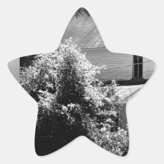 Hogar del empuje del oposum de la caza S. Osborn Calcomania Forma De Estrella