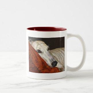 Hogar en la taza pasada de la taza del perro del