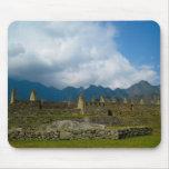 Hogares majestuosos de Macchu Picchu Tapetes De Raton