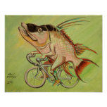 Hogfish on a Bicycle Poster