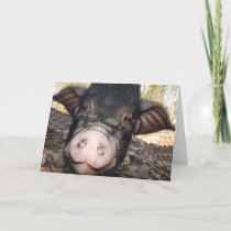 Hogs and Kisses, Mother's Day, Mini Pig Card