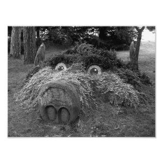 Hogs Head, Bute Park, Cardiff Photo Print