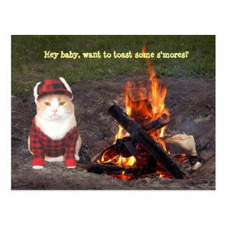 Hoguera del gatito postal