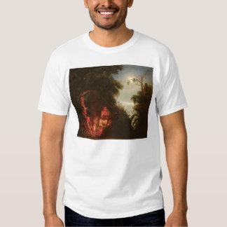 Hoguera india (2166A) Camisas