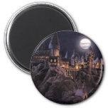 Hogwarts Boats To Castle Refrigerator Magnet
