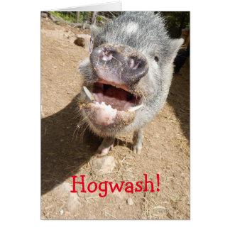 Hogwash! You don't look THAT old, Smiling Mini Pig Card