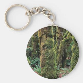 Hoh Rain Forest, Olympic National Park, Washington Keychains