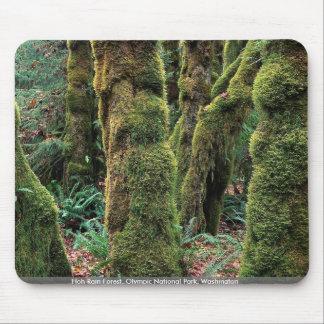 Hoh Rain Forest, Olympic National Park, Washington Mousepad