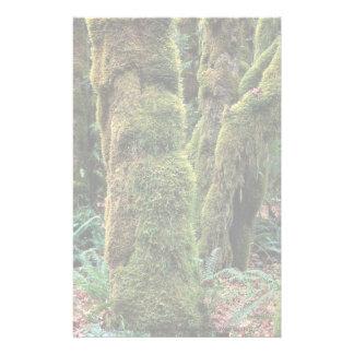 Hoh Rain Forest, Olympic National Park, Washington Customized Stationery