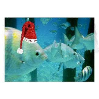 HoHoHo Tropical Fish Greeting Cards