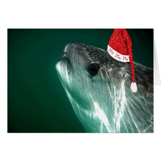 HoHoHo Whale Shark Card