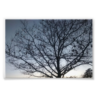 hoisted sky photo print
