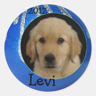 Hoja 2012 del pegatina de Levi