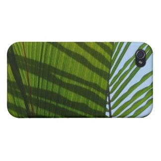 Hoja abstracta del verde de la fotografía iPhone 4/4S fundas