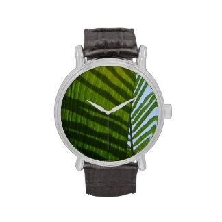 Hoja abstracta del verde de la fotografía relojes