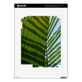 Hoja abstracta del verde de la fotografía iPad 3 skin