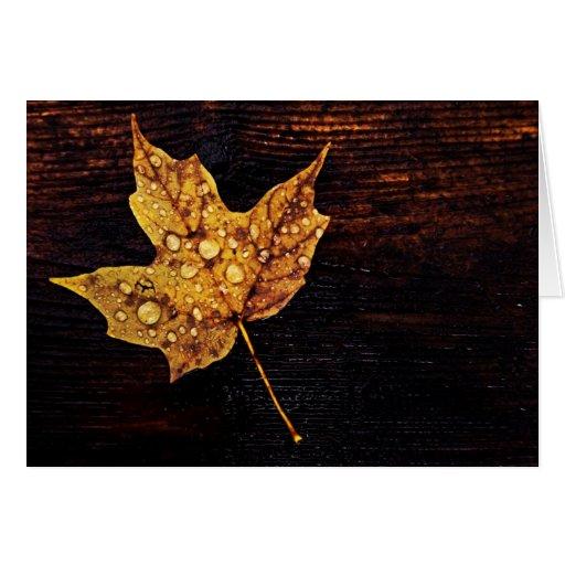 hoja amarilla del otoño con las gotas de agua tarjetón