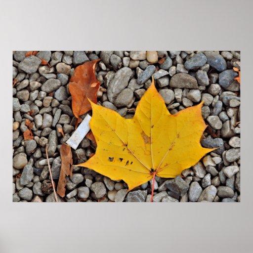 Hoja amarilla del otoño poster